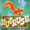 Nut Rush